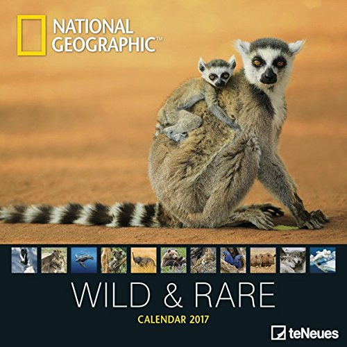 2017 Wild & Rare Calendar - teNeues Grid Calendar - National Geographic - Photography Calendar - 30 x 30 cm por National Geographic