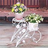 HZB Mensola in ferro in stile europeo con fiori, vaso da giardino tipo doppio pavimento con fioriera, balcone interno per soggiorno, cornice in vaso.
