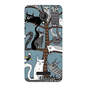 Impressive Cat On Trees Print Back Case Cover for Micromax Canvas Spark Q380