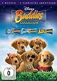 Buddies Collection kostenlos online stream