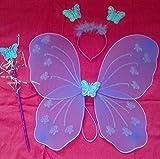 Kidsgenie Fairy Butterfly Wings Costume ...