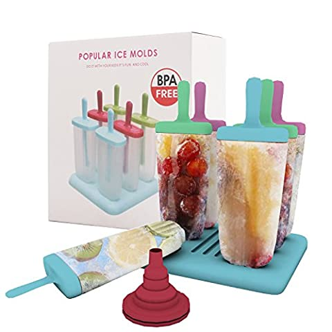6 Stück Eis am Stiel Formen mit Befülltrichter für leckeres selbstgemachtes Eis am Stiel für Kinder und Erwachsene,Material spülmaschinengeeignet und lebensmittelecht