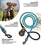 Hundeleine Tajo aus hochwertigem Kletterseil mit Bolzenkarabiner - JACK & RUSSELL Hunde Leine mit Soft-Grip Handschlaufe (Blau / Reflektierend)