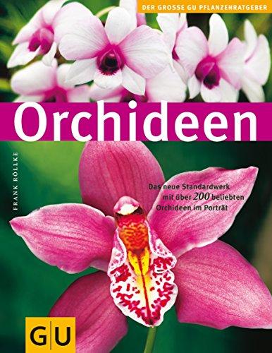 Orchideen Orchideen pflegen
