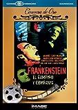 Frankestein: El vampiro y compania [Reino Unido] [DVD]