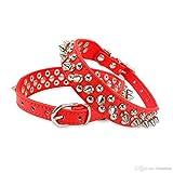 amara-global Hunde Halsband Nieten Spikes Halsband Luxury in 5 Farben u. Größen GG-78 (ROT, M)