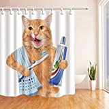 Eine Katze mit Zahnpasta auf die Zahnbürste Duschvorhang Polyester-179,8x 179,8cm Schimmelresistent-Badezimmer Fantastische Dekorationen Bad Vorhänge Haken im Lieferumfang enthalten