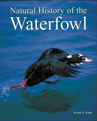 Natural History of the Waterfowl by Frank S. Todd (1997-06-01)