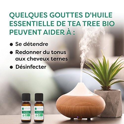 Huile Essentielle BIO d'Arbre à thé (Tea tree)