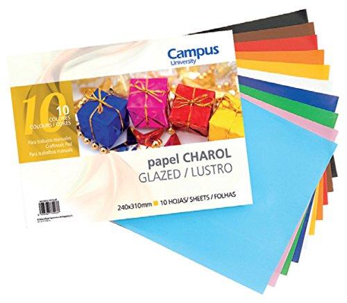 Campus University 630096 - Pack de 10 hojas de papel charol, 24 x 31 cm