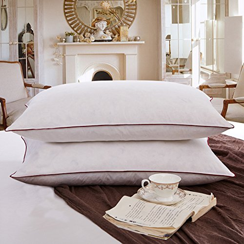 down-pillow-90-white-duck-down-pillow-pillow