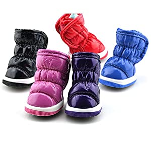 Sweetds Neige Bottes Chaussures Mode d'hiver Chien