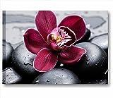 Blume Steine Schwarz 3–Rahmen modern 70x 50cm Druck auf Leinwand Bilder Blume Orchidee rot lila Steine Schwarz Steine Natur Badezimmer Relax Hauptdécor Wellness Zentrum Schönheit SPA Hotel
