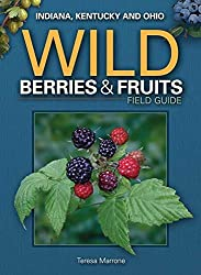 Wild Berries & Fruits Field Guide of IN, KY, OH (Wild Berries & Fruits Identification Guides) by Teresa Marrone (2011-04-01)