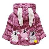 FeiliandaJJ Baby Mädchen Mit Kapuze Fleece Jacke Säugling Kinder Winter Cute Kaninchenohr Zipper Dicke Warme Coat Mantel Outerwear (100 (18~24Monate), Lila)