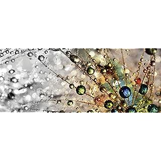 Artland Qualitätsbilder I Glasbilder Deko Glas Bilder 125 x 50 cm Botanik Blumen Pusteblume Foto Bunt F1YG Farbenfrohe Natur