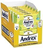 Lingettes Andrex pour enfants, lot de 12