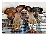 DigitalOase Glückwunschkarte 75. Geburtstag Geburtstagskarte Grußkarte Format DIN A4 A3 Klappkarte PanoramaUmschlag #DOGS Tiere Hunde
