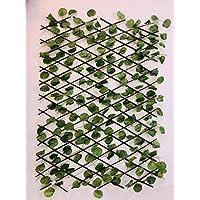 شبكة نبات قابلة للتوسيع، 2.5 × 1.5 متر