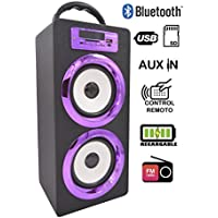 DYNASONIC Altavoz Bluetooth Portatil 10W, Reproductor mp3 inalámbrico portátil, Lector USB SD, Radio FM - Modelo 022-4