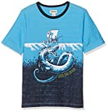 Hatley Short Sleeve Graphic tee, Camiseta para Niños, Azul (Viking Fishing), 4 Años