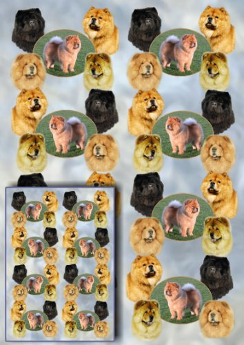 chow-chow-dog-gift-wrapping-paper-with-small-gift-card-design-by-starprint