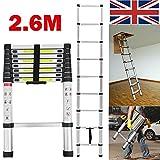 DIY aus Aluminium-telescopic Ladder 6m (tragbar) 8.5ft 9, für die Leiter