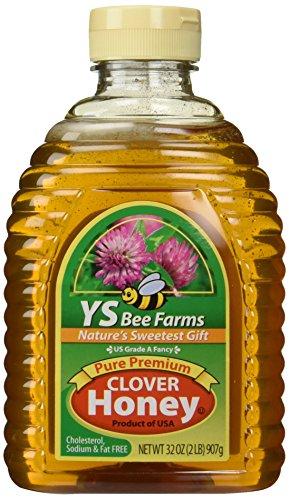 Y.S. Organic Farms Bee, Pure Premium-Klee Honig, 32 oz (£ 2) 907 g (Honig Klee)