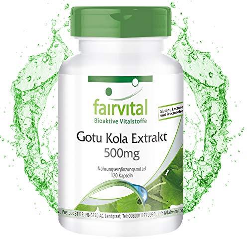 Gotu Kola Kapseln 500mg - Extrakt - HOCHDOSIERT - VEGAN - 120 Kapseln - Asiaticoside