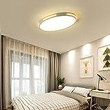Ultra thin Deckenleuchte LED 3 Farbe Dimmbar Oval Modern Design Deckenlampe Kleines Schlafzimmer Arbeitszimmer Beleuchtung Leuchte Einfach Decken Eisen Acryl Lampe 58cm * 38cm * 5cm 24W (Weiss)