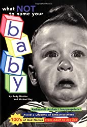 What Not to Name Your Baby by Andy Meisler (1996-03-01)