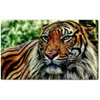 Jungle Animals Tigers King Theme Table Mats Customized Made to Order Support Ready 28 6/16 Inch (720mm) X 17 11/16 Inch (450mm) X 1/8 Inch (4mm) High Quality Eco Friendly Cloth with Neoprene Rubber MSD Deskmat Desktop Mousepad Laptop Mousepads Comfortable Computer Place Play Mat Cute Gaming Mouse pads - 4 Mm Tiger