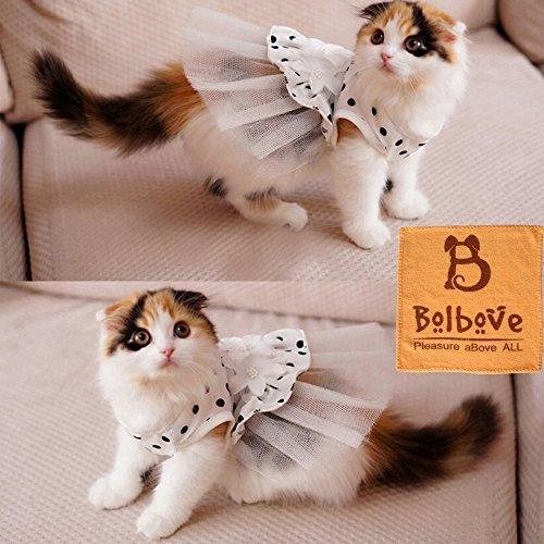 Ich 'Pet ® Prinzessin Blumen Brautkleid Kleiner Hund Katze Party Tutu Ballkleid Puppy Dot Rock Doggy Foto Apparel Dehnbar Kleidung Mesh Kostüm für Spring Summer Wear, Large, Weiß (Party Store Ich)