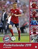 FC Bayern München Posterkalender - Kalender 2019