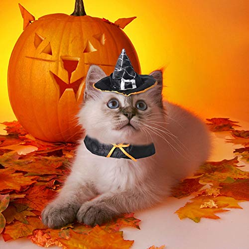Lager Show Pet Halloween Wizard Hat, Schwarz Hexe Gap Party Kostüm mit Kopfbedeckungen Cosplay Zubehör für Katzen/Kitty/Kleine Hunde