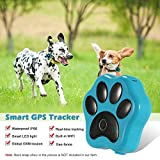 Pet GPS Tracker Localizzatore Collar Dog antifurto Pet, WiFi, Real Time Tracking LED, recinto con App per iPhone e Android