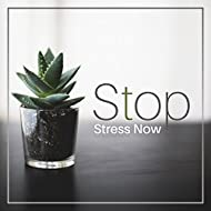 Stop Stress Now – Therapy Music, Relief Stress, Deep Relaxation, Zen, Calming Nature Sounds, Bliss