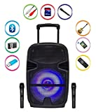 Qualimate 15 Inch Karaoke Bluetooth PA System Portable Trolley Speaker with 2 Wireless