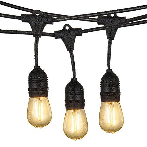 Guirnalda de Luces, iEGrow Cadena de Luces 48 Pies IP65 Impermeable Proteger, Guirnaldas Bombillas Luminosas 15 x ST45 luz blanca Bombillas LED (2W/200 Lumen cada pieza,220V) Para Interior/Exterior