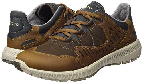 Ecco Terrawalk, Zapatos de Low Rise Senderismo para Mujer, Marrón (Camel/Cocoa Brown), 40 EU Ecco