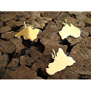 Zierliche Wunsch Landkarten Anhänger in 585er Gelbgold (ein Kontinent)