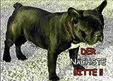 INDIGOS UG - Türschild FunSchild - SE116 DIN A5 ACHTUNG Hund AMERICAN BULLDOG - für Käfig, Zwinger, Haustier, Tür, Tier, Aquarium - aus hochwertigem Alu-Dibond beschriftet sehr stabil