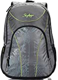 #7: Skybags Flux 25 Ltrs Grey Casual Backpack (LPBPFLX1GRY)
