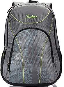 Skybags Flux 25 Ltrs Grey Casual Backpack (LPBPFLX1GRY)