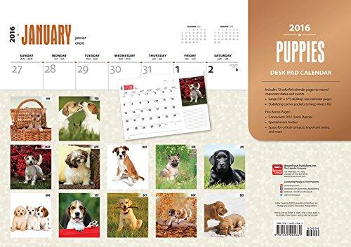 2016-scrivania-calendario-calendario-12-mesi-motivo-cuccioli-giornaliera-settimanale-mensile-annuale