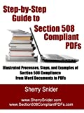 Step By Step Guide to Section 508 Compliant PDFs: Illustrated Processes, Steps, and Examples of Section 508 Compliance from Word Documents to PDFs