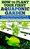 How To Plant Your First Aquaponic Garden