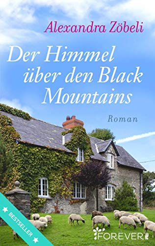 Der Himmel über den Black Mountains: Roman