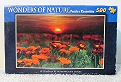 Wonders of Nature - Sunset with Orange Wildflowers - 500 pc