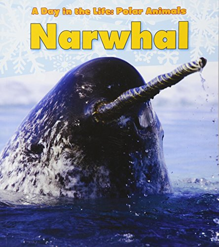 Narwhal (Day in the Life: Polar Animals (Paperback))
